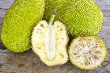 Raw Jackfruit