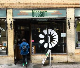 Blossom Du Jour (1 of 1)