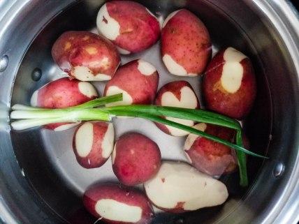 Potatoes (1 of 1)